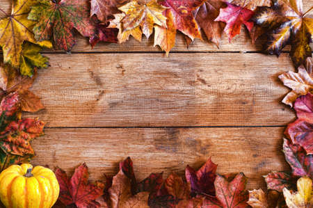 Autumn leaves frame with pumpkin gourd on rustic wood background