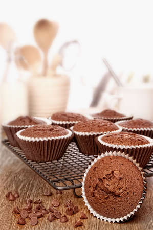 Freshly baked chocolate chip muffins cooling on wire rack in the kitchen Standard-Bild