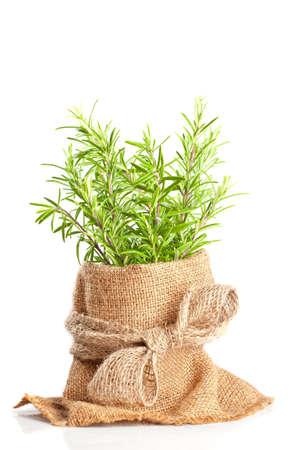 jute: Fresh rosemary herbs in hessian sacking on white background Stock Photo