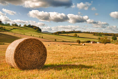 Perfect harvest landscape with straw bales amongst fields in UK photo