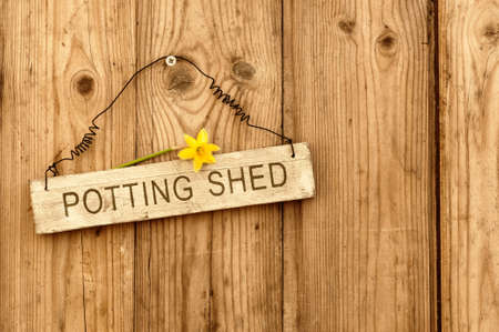 Potting shed sign on wooden background with daffodil flower