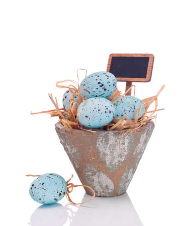 Speckled Easter eggs in pot with blank sign for your text on white background Stock Photo - 10406043