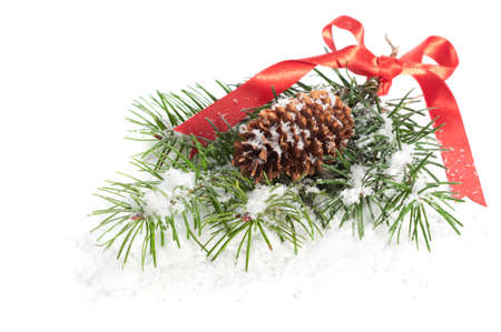 Christmas pine branch with cone tied with festive red ribbon covered in snow Stock Photo - 11099755