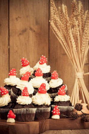 Autumnal chocolate muffins  decorated with handmade icing mushrooms with rustic background photo