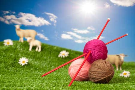 Ovillos de lana con agujas de tejer en el prado con ovejas - el concepto de punto