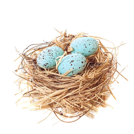 nido de pajaros: Nido de huevos de Pascua de colores brillantes sobre un fondo blanco Foto de archivo