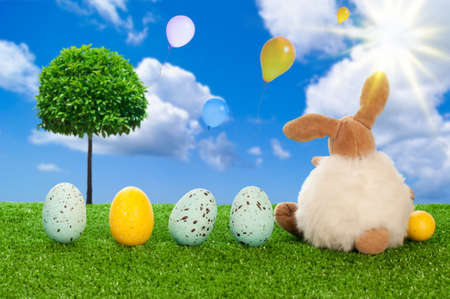 Easter bunny with easter eggs overlooking sky filled with balloons Stock Photo - 12463886