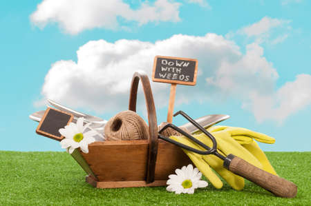 Gardening trug filled with tools for spring planting photo