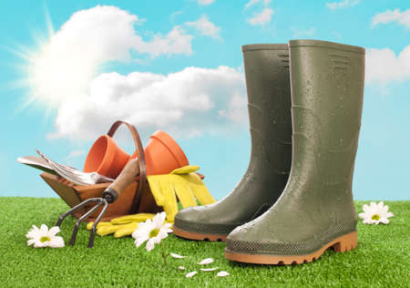 garden tool: Wellington boots with trug of garden tools in background