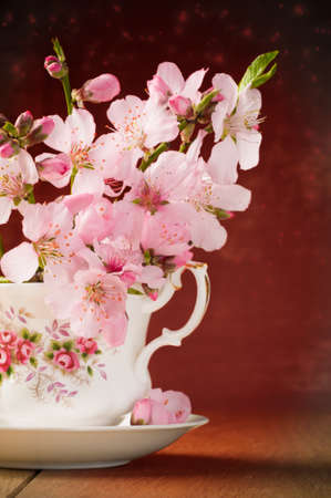 teacup: Spring blossom in cup and saucer