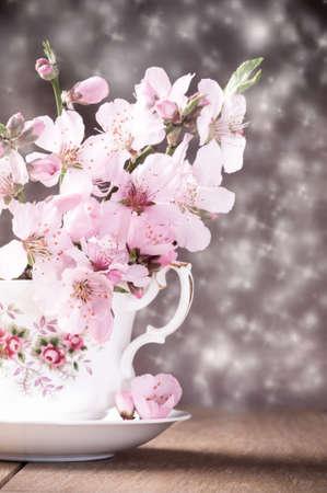 Spring blossom still life in vintage teacup  photo