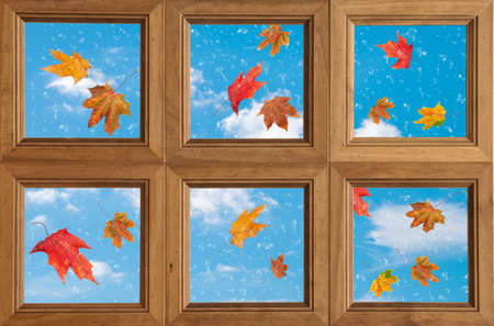 Falling leaves outside a window covered with raindrops photo