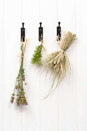 dried herbs: Drying herbs and lavender, hanging in rustic country kitchen