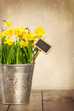 Large bucket of spring daffodils with blank label on textured background photo