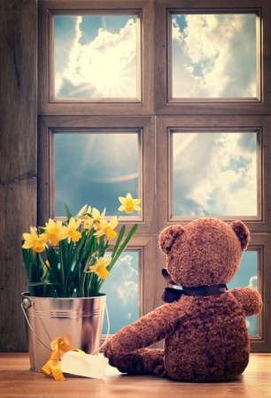 Spring window with daffodils and vintage feel