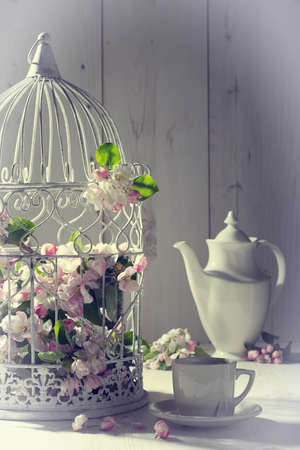 high tea: Vintage afternoon tea with birdcage filled with spring blossom Stock Photo