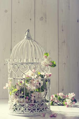 Vogelkooi vol met bloesem van de appelboom met vintage effect