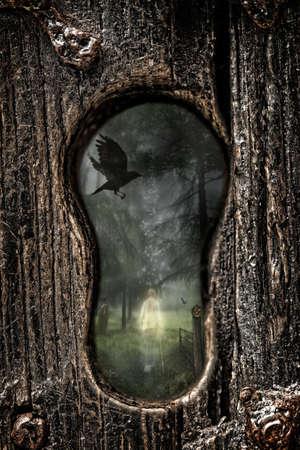 crow: Ghostly gentleman through the keyhole of heavy wooden door