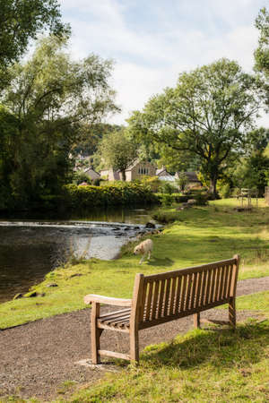 weir: Country rustic bench overlooking stream of water in Bakewell, Derbyshire, UK