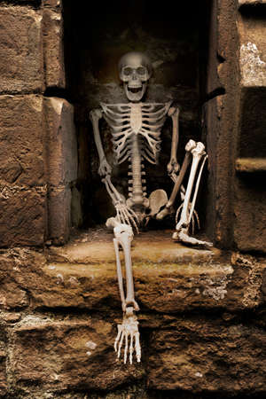 Skeleton sitting in an alcove of ruined abbey