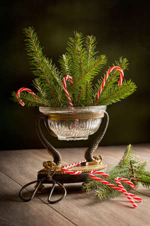 Elegant antique vase filled with pine branches and candy canes for the holiday season photo
