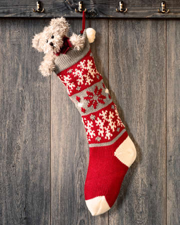 Christmas stocking hanging on hook filled with teddy bear