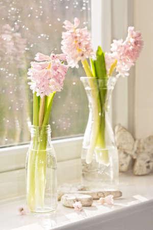 Jacintos de primavera en la ventana con gotas de lluvia sobre el cristal