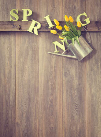 wood panelled: Watering can filled with spring tulips - vintage tone effect added