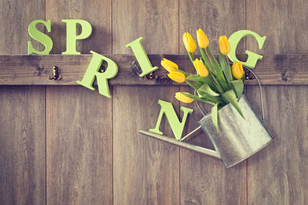 wood panelled: Garden shed with hanging watering can with tulips - vintage tone effect added