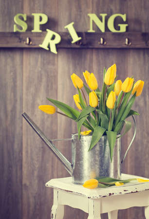 wood panelled: Spring tulips in watering can on rustic table Stock Photo