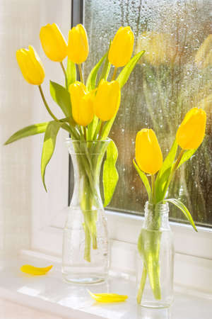 Bright yellow tulips in vintage glass bottles in window Imagens