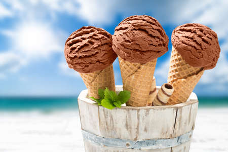 Close up of chocolate ice creams with mint and wafer decoration photo