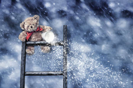 tipping: Teddy bear sitting on ladder throwing snow from a bucket