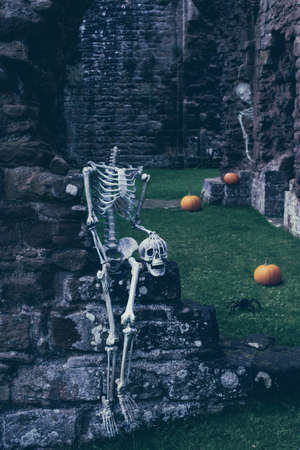 abbey ruins abbey: Skeletons at abbey ruins for Halloween