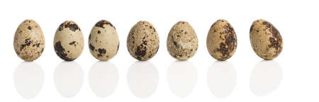 upright row: Row of quail eggs with reflection isolated on a white background