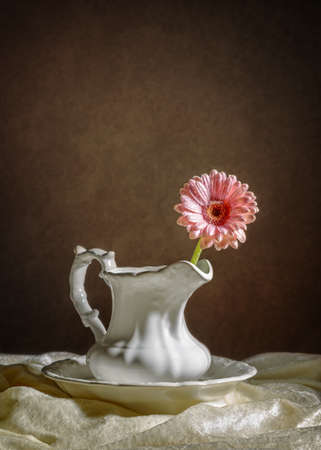 porcelain flower: Single Gerbera flower stem in porcelain jug