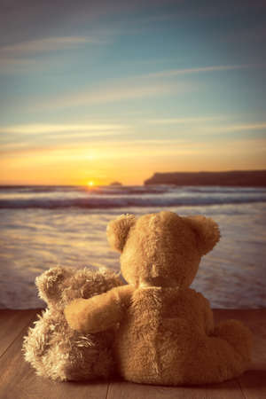 coastal: Teddies watching the setting sun at the coast