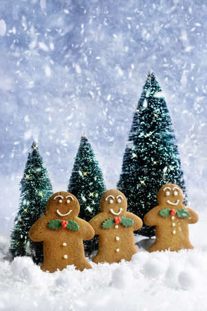 gingerbread cookies: Gingerbread cookies at Christmas in the snow