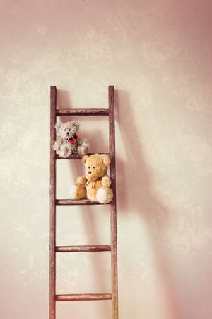 rungs: Two little teddy bears sitting on the rungs of a wooden ladder