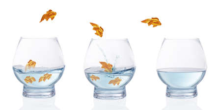goldfish jump: Heading for calmer waters - stylised goldfish leaping from choppy water to calm water