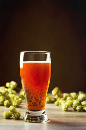 real ale: Glass of beer with hops in the background - plenty of copy space for text