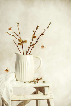 Spring still life with jug of catkin sprigs on step ladder  Reklamní fotografie