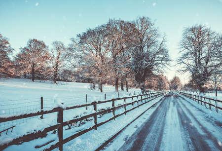 夕方の日差しの中、イギリスの線路に並ぶフェンスの下の雪のフェンス 写真素材