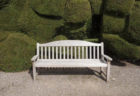 An empty garden bench in front of an organic topiary hedge