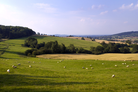Evening sunshine view of an idyllic valley in the Cotswold countryside near Winchcombe, Gloucesteshire, UK. Foto de archivo