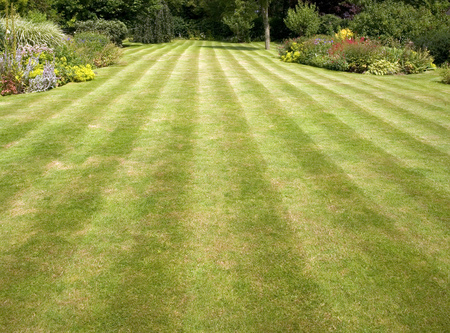 Large lawned garden with mower stripes in grass