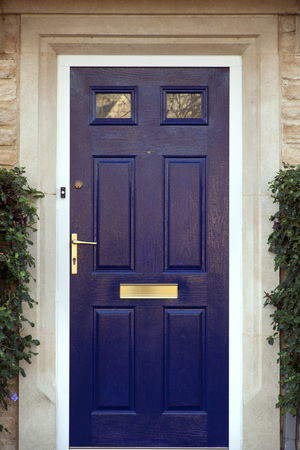 Modern blue painted front door flanked by shrubs