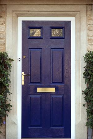 Puerta de entrada pintada de azul moderna flanqueada por arbustos