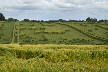 Strange geometric shapes formed by overnight rain storm damage to crops in fields in Gloucestershire, UK