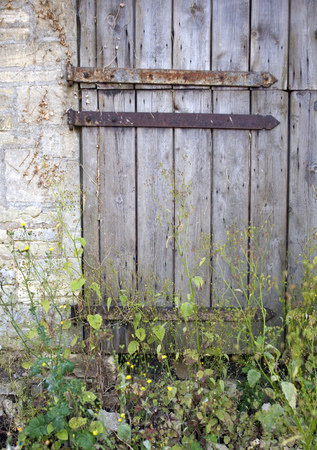 Old weathered rusty hinged stable door entrance blocked with weeds